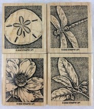 Stampin Up Natures Wonders Stamps Set of 4 Flower Dragonfly Sand Dollar Rubber - $12.82