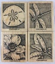 Stampin Up Natures Wonders Stamps Set of 4 Flower Dragonfly Sand Dollar ... - $12.82