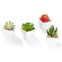 Nattol Set of 4 Mini Assorted Green Artificial Succulent Plants in White... - $16.15