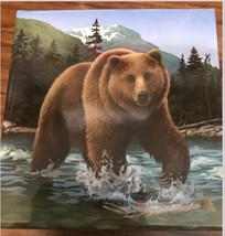 CANADA 2014 $100 1 OUNCE PROOF SILVER COIN GRIZZLY BEAR S12649-A40 - $135.63