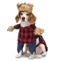Dog Halloween Costume Werewolf Pet Costumes XS - L - €21,25 EUR