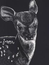 "Akimova: DEER, Bambi, scratch paper, animal, zoo, black and white, 5.5""x7"" - $19.00"
