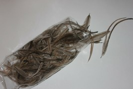 Ten (10x10 grm pack) - 100gm  natural body emu feathers for craft - mill... - $39.43