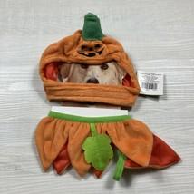New Pet Halloween Costume Pumpkin Hat and Ruffled Collar - $11.88