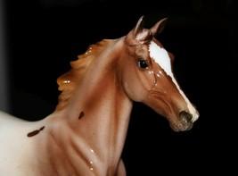 Breyer Horse  SASSY  2020 Collector Club GLOSSY  Lonesome Glory Appaloos... - $165.00