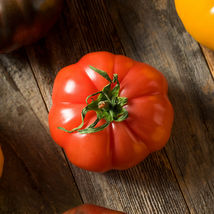 Ship From Us Tomato Seeds - Floradel ~1/2 Oz Pack Seeds - NON-GMO, Heirloom TM11 - $52.76