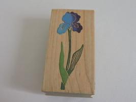 All Night Media Posh Impressions Stamp Iris Flower Dee Gruenig Card Making Craft - $8.01