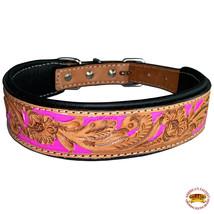 Strong Genuine Leather Dog Collar Padded Beaded Hilason U-C115 - $25.49