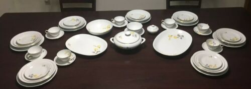 Primary image for Vintage Thomas Germany Rosenthal Fine Bone China 56 Pcs Very Rare Pattern VHTF