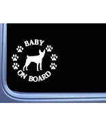 """Baby on Board Rat Terrier L504 6"""" Sticker dog decal - $4.99"""