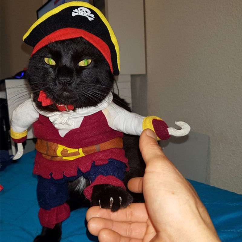 Cat Costume Clothing Pirate Halloween Dress Up Kitten Cute Kitty Suit