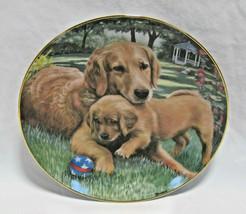 """Danbury Mint Golden Retriever Dog Tender Touch Collector Plate - 8"""" - $17.99"""