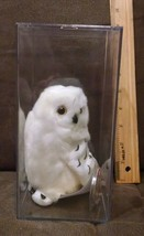 TY KNOWLEDGE the SNOWY OWL - BORDERS EXCLUSIVE - in sealed hard case - $24.99