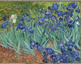 "8x10"" ultra premium poster print,   Irises-Vincent_van Gogh. 1889 - $11.99"
