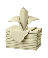 Remedios Cloth Napkins Set of 12 Pieces 20x20 inch Oversized inch Polyes... - $13.19