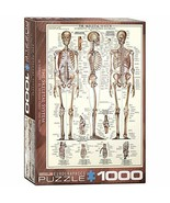 EuroGraphics Skeletal System (Chart) Puzzle (1000-Piece) (6000-3970) - $24.74