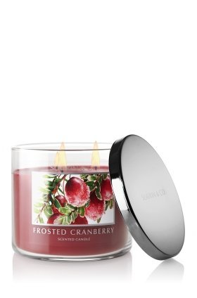 Bath & Body Works Slatkin & Co. FROSTED CRANBERRY Scented Candle 14.5 oz / 411 g