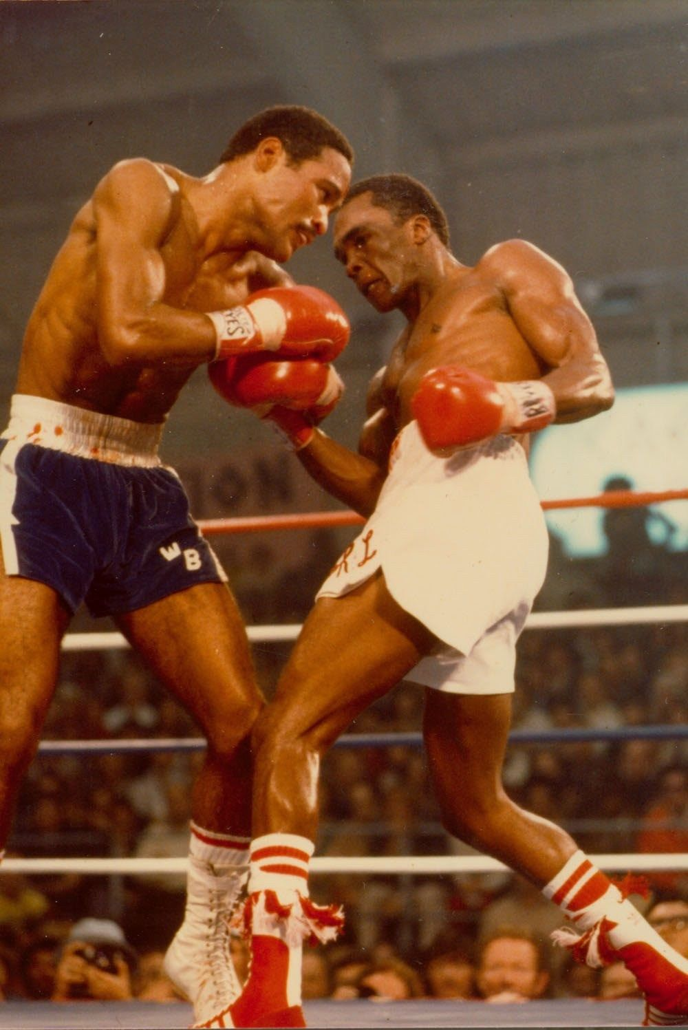 SUGAR RAY LEONARD vs WILFREDO BENITEZ 8X10 PHOTO BOXING PICTURE IN CLOSE ACTION