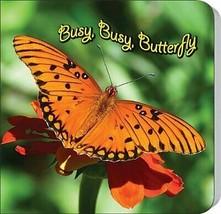 Busy, Busy Butterfly (Rourke Board Books) Hardcover – September 9, 2011 - $9.52