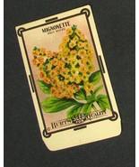 Vintage Burt's Flower Seed Packet Mignonette 1910's - $14.95