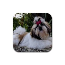 Cute Shih Tzu Dog Breed Puppy Puppies Dogs Pet ... - $1.99