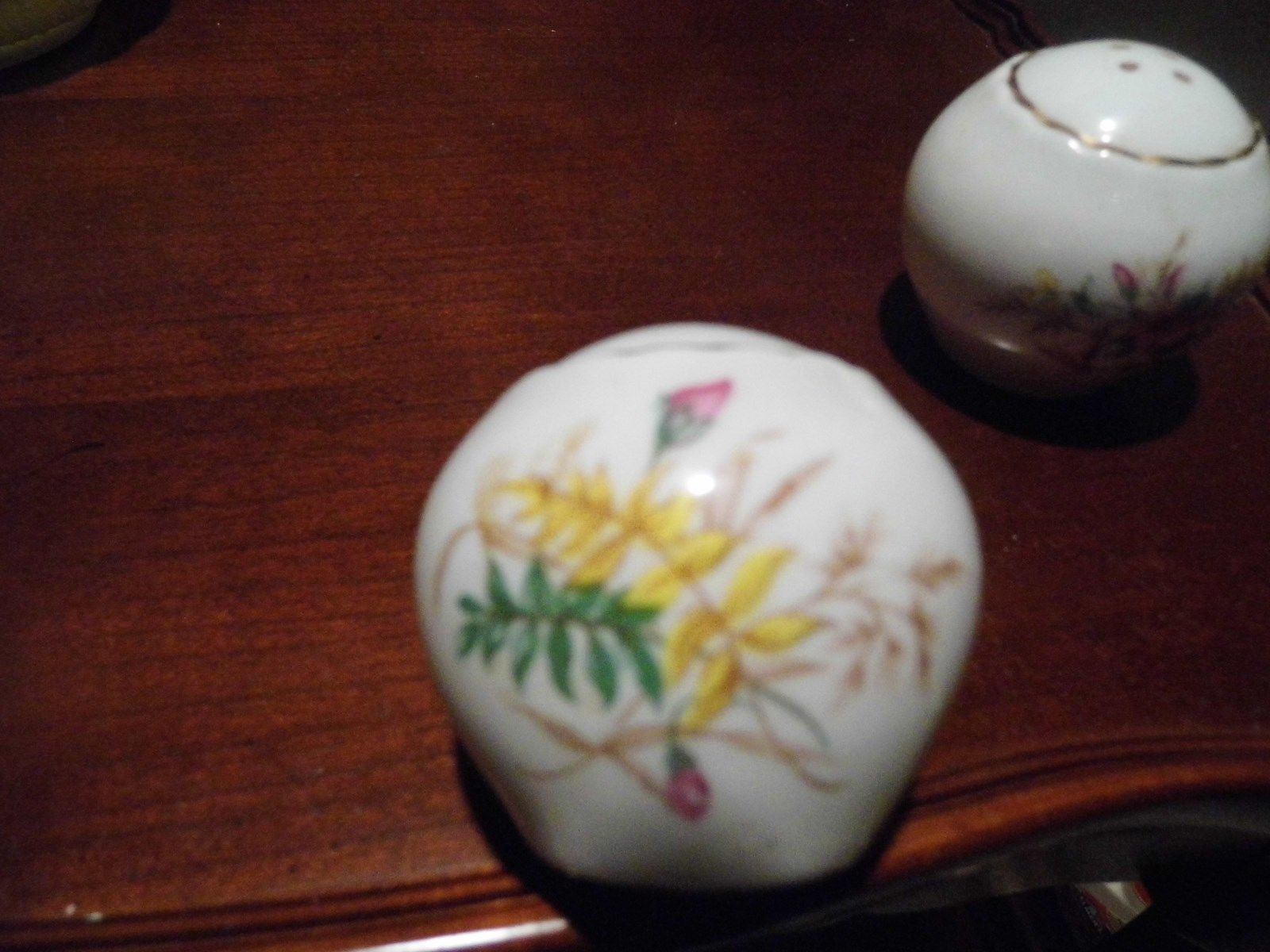Rosina Co. Made in England Bone China Salt & Pepper Roses Oval Shape 1948