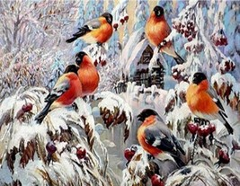 """Winter Bird 16X20"""" Paint By Number Kit DIY Acrylic Painting on Canvas Frameless  - $8.99"""