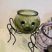 Spider Planter with Succulent, Halloween Pot, Sempervivum, Hens and Chicks image 8