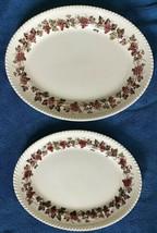 "Vintage Johnson Bros Empire Grape Large 14"" & Small 12"" Oval Serving Platter HTF - $57.99"