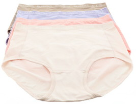 Breezies Set 4 Nylon Microfiber Brief Panty Lilac 3X NEW A287799 - $17.80
