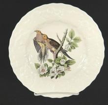 Alfred Meakin Audubon Birds of America Luncheon Plate Carolina Turtle Dove #17 - $15.04