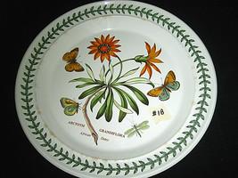 "Portmeirion Botanic Garden Dinner Plate African Daisy 10 1/2"" #1b - $34.99"