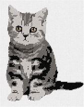 pepita Paws Needlepoint Canvas - $50.00