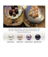 MIX Color  6-7mm Akoya round pearl in oyster vacuum-packed 40pcs NEW ARR... - $181.96