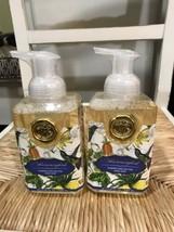 2 Michel Dw Hummingbird Foaming Shea Butter Hand Soap 17.8 Oz Lot Of 2 Bottles - $34.95