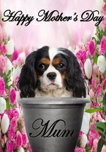 Cavalier King Charle pot A5 Mother's Day Greeting Card Mother mom Codepp flowers - $4.26