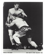 MAX BAER vs TONY GALLENTO 8X10 PHOTO BOXING PICTURE - $3.95