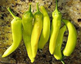 50 Pcs Hungarian Hot Pepper Seeds, Yellow Hot Peppers, Heirloom Hot Pepp... - $13.99