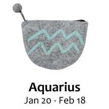 Felt Aquarius Zodiac Coin Purse - Global Groove - $17.99