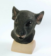 Rat, Halloween, Animal Masque Yeux, Déguisement - $28.87 CAD