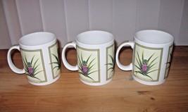 Lot of 3 Hilo Hattie 2005 Island Heritage Mugs Hawaiian Tropical Pineapples - $11.39