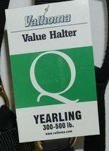 Valhoma 350QBK Black Yearling Horse Halter Three to Six Hundred Pounds image 4