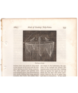 Jelly Fishes Mode of Catching Marine Art Illustration 1865 Article by A.... - $10.99