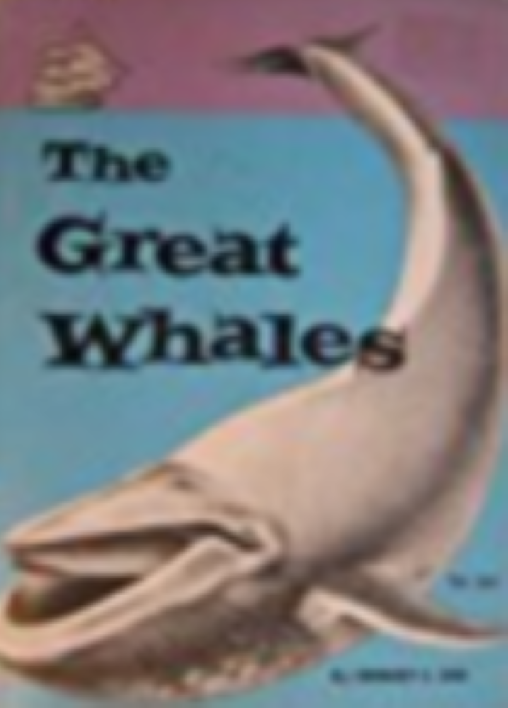 The Great Whales by Zim, Herbert S.