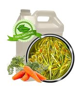 Carrot Seed Oil - 1 gallon(128oz)-Virgin,Cold-pressed-Skin Nourishing,An... - $1,274.00