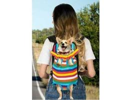 Colorful Pet Carrier Backpack - Perfect for Your Puppy! image 3