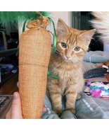 Cat toy Catnip Filled Carrot - $9.50