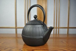 New Japanese Nanbu Tekki Iron Tea Kettle Tetsubin teapot CHIGUSA made in... - $219.38