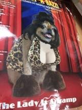 "Halloween Costume sz XS PUP - A - RAZZI "" The Lady is a Tramp "" - $8.59"