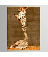 Giraffe Family Wall Art on Canvas - $16.61+